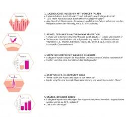 Wirkungseffekte des LR 5 in 1 Beautyelixier