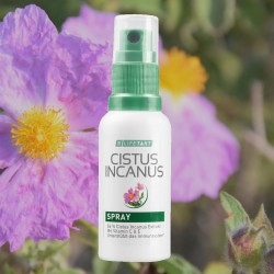 LR Cistus Incanus Spray