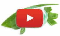 Aloe Vera von LR Video