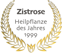 Zistrose - Heilpflanze des Jahres 1999