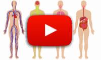 Video Vitamine
